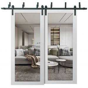 Sliding Closet Clear Glass Barn Bypass Doors | Lucia 2166 White Silk | Sturdy 6.6ft Rails Hardware Set | Wood Solid Bedroom Wardrobe Doors