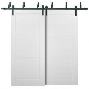 Barn Bypass Doors with 6.6ft Hardware | Quadro 4115 White Silk | Sturdy Heavy Duty Rails Kit Steel Set | Double Sliding Panel Door