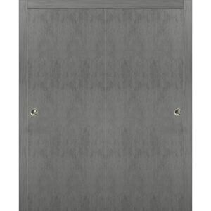 Sliding Closet Bypass Doors | Planum 0010 Concrete | Sturdy Top Mount Rails Moldings Trims Hardware Set | Wood Solid Bedroom Wardrobe Doors